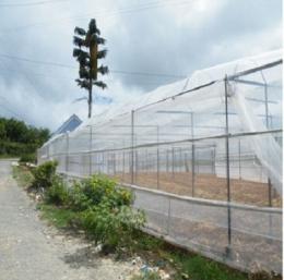 Lưới HDPE bao che chắn gió - ngăn chặn côn trùng - che nắng